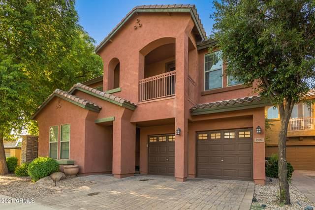 3904 E Frances Lane, Gilbert, AZ 85295 (MLS #6280773) :: Elite Home Advisors