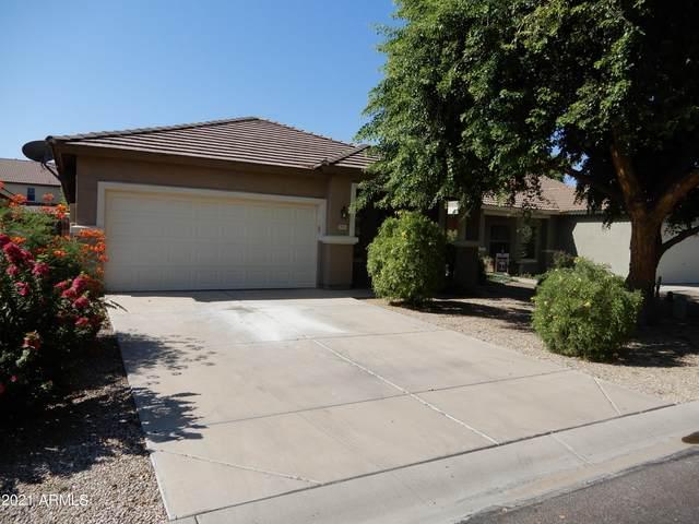 805 E Maddison Street, San Tan Valley, AZ 85140 (MLS #6281024) :: Yost Realty Group at RE/MAX Casa Grande