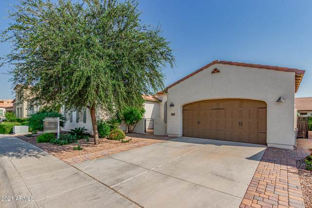 1565 E Verde Boulevard, San Tan Valley, AZ 85140 (MLS #6281346) :: NextView Home Professionals, Brokered by eXp Realty