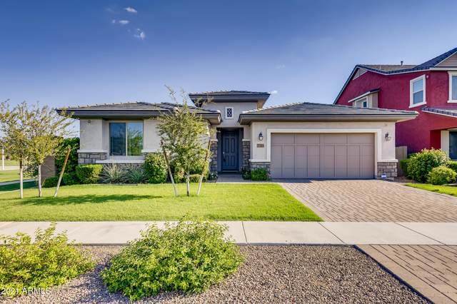 7265 E Portobello Avenue, Mesa, AZ 85212 (MLS #6281517) :: Yost Realty Group at RE/MAX Casa Grande