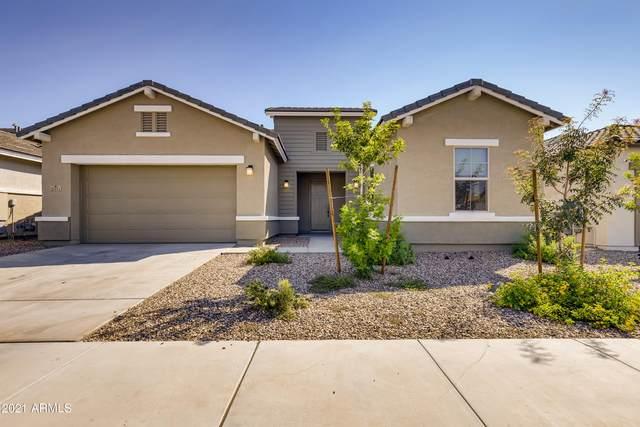 21111 E Arroyo Verde Drive, Queen Creek, AZ 85142 (MLS #6282375) :: Elite Home Advisors