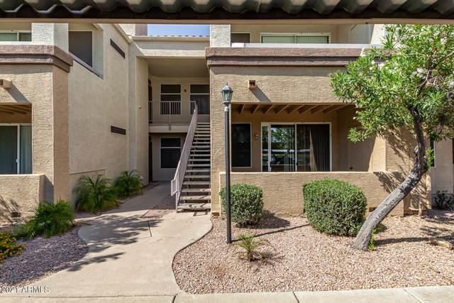 11375 E Sahuaro Drive #1028, Scottsdale, AZ 85259 (MLS #6282449) :: Arizona Home Group