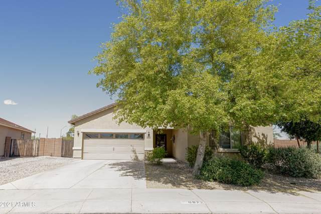 6877 S 251ST Drive, Buckeye, AZ 85326 (MLS #6282743) :: Elite Home Advisors