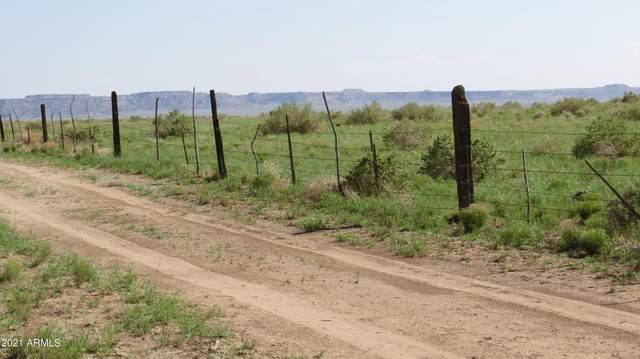 Petrified Forest Estates Unit 5 Lot 152, Sanders, AZ 86512 (MLS #6282840) :: Yost Realty Group at RE/MAX Casa Grande