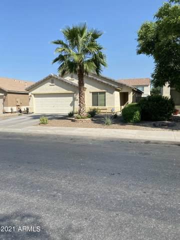 45556 W Dirk Street, Maricopa, AZ 85139 (MLS #6283131) :: Elite Home Advisors