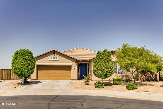 561 N 158TH Drive, Goodyear, AZ 85338 (MLS #6283154) :: Elite Home Advisors