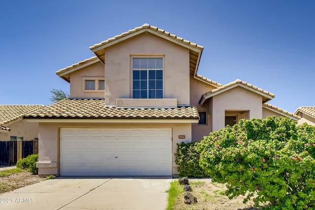 3534 N Ravine Street, Mesa, AZ 85215 (MLS #6283185) :: Elite Home Advisors