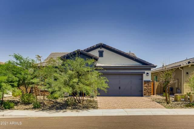 8857 S 167TH Lane, Goodyear, AZ 85338 (MLS #6283287) :: Elite Home Advisors