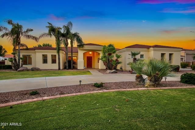 19942 E Camina Plata, Queen Creek, AZ 85142 (MLS #6283447) :: Yost Realty Group at RE/MAX Casa Grande