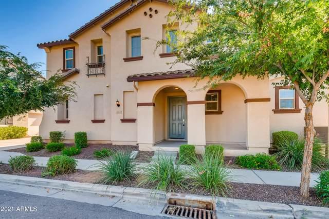 853 S Swallow Lane, Gilbert, AZ 85296 (MLS #6283471) :: Elite Home Advisors