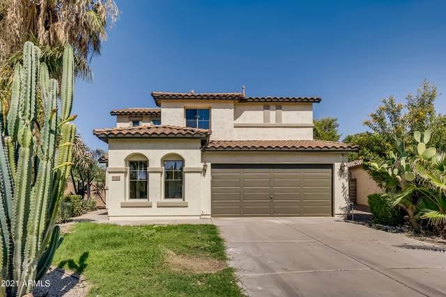 39527 N Zampino Street, San Tan Valley, AZ 85140 (MLS #6283635) :: Elite Home Advisors