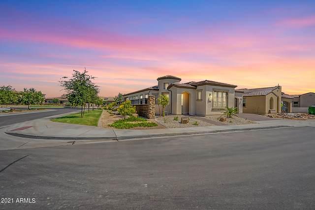 36169 N Serrano Avenue, Queen Creek, AZ 85140 (MLS #6284058) :: Elite Home Advisors