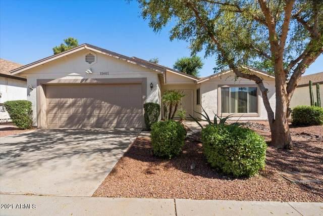 15601 N 38TH Place, Phoenix, AZ 85032 (MLS #6284312) :: Elite Home Advisors