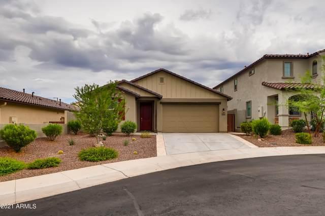 11423 S Copper Court, Goodyear, AZ 85338 (MLS #6284458) :: Executive Realty Advisors