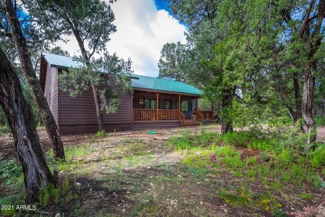 1861 Little Doe Trail, Heber, AZ 85928 (MLS #6284710) :: Yost Realty Group at RE/MAX Casa Grande