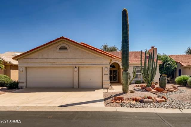 9325 E Cedar Waxwing Drive, Sun Lakes, AZ 85248 (MLS #6284754) :: Elite Home Advisors