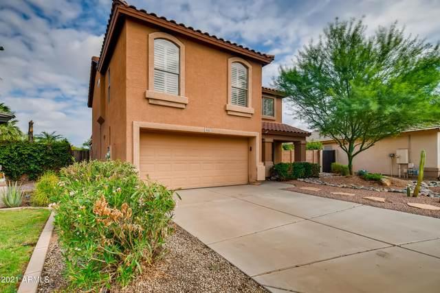 9302 E Plata Avenue, Mesa, AZ 85212 (MLS #6285408) :: Elite Home Advisors