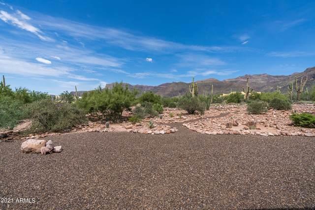 10100 E Cloudview Avenue, Gold Canyon, AZ 85118 (MLS #6286052) :: Dijkstra & Co.
