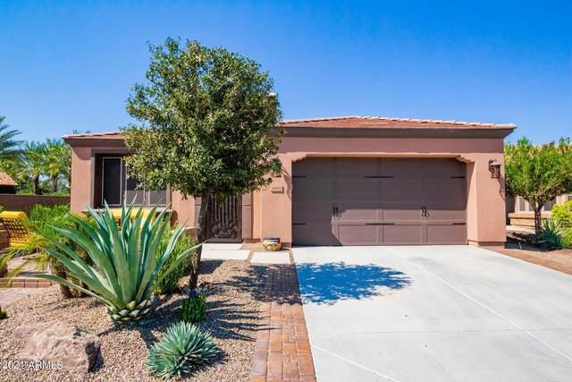 36818 N Stoneware Drive, San Tan Valley, AZ 85140 (MLS #6286834) :: My Home Group