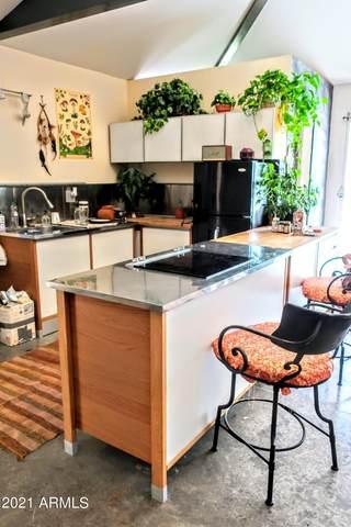 1724 S El Camino Drive, Tempe, AZ 85281 (MLS #6286842) :: Elite Home Advisors