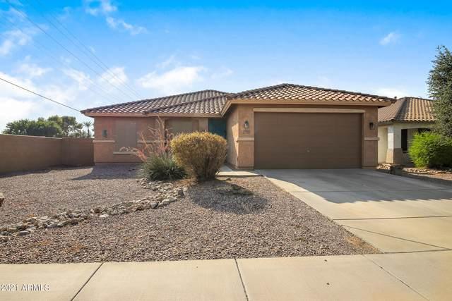 40760 N Vine Avenue, San Tan Valley, AZ 85140 (MLS #6286981) :: Elite Home Advisors