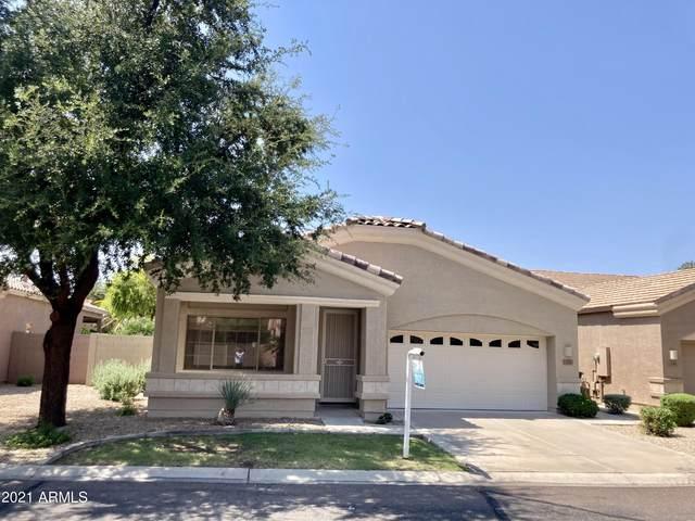 1270 N Salida Del Sol Drive, Chandler, AZ 85224 (MLS #6288151) :: Yost Realty Group at RE/MAX Casa Grande