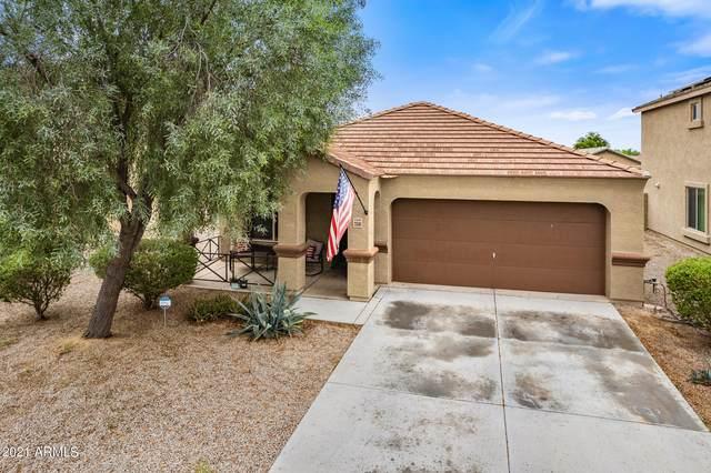 23581 W Wier Avenue, Buckeye, AZ 85326 (MLS #6288409) :: Elite Home Advisors