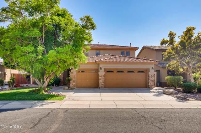 5913 W Blue Sky Drive, Phoenix, AZ 85083 (MLS #6288424) :: Yost Realty Group at RE/MAX Casa Grande