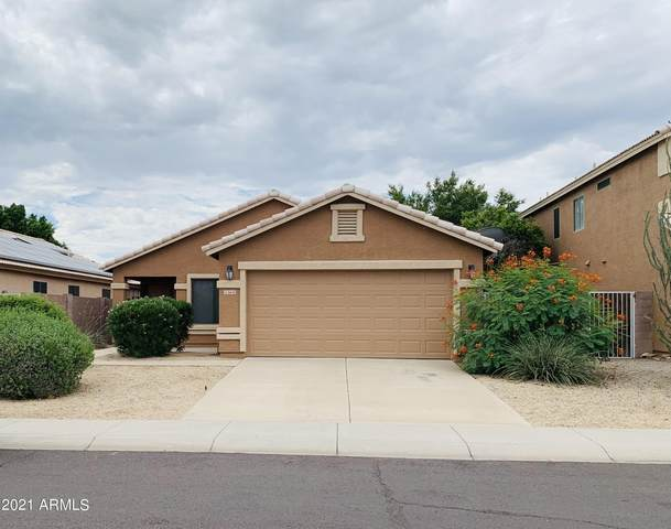8643 W Mauro Lane, Peoria, AZ 85382 (MLS #6288617) :: Elite Home Advisors
