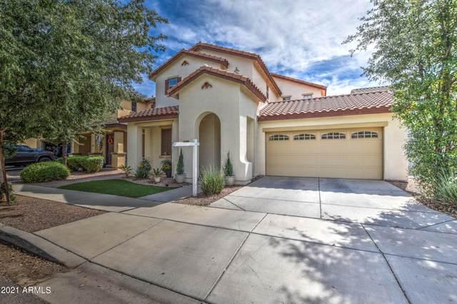3497 E Carla Vista Drive, Gilbert, AZ 85295 (MLS #6288941) :: Elite Home Advisors