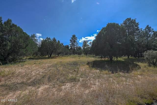 2217 Mountain Lion Lane, Overgaard, AZ 85933 (MLS #6289008) :: The Copa Team | The Maricopa Real Estate Company