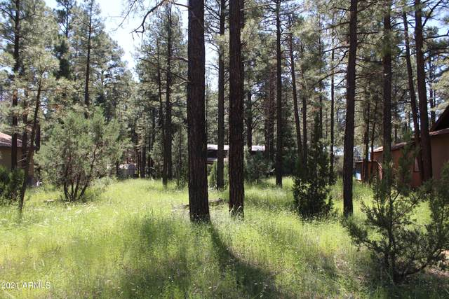 2159 Wildflower Road, Overgaard, AZ 85933 (MLS #6289300) :: Executive Realty Advisors