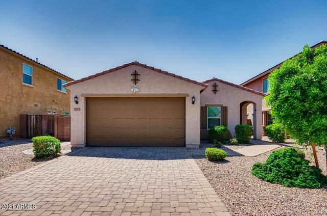 3273 E Lantana Place, Chandler, AZ 85286 (MLS #6290120) :: Elite Home Advisors