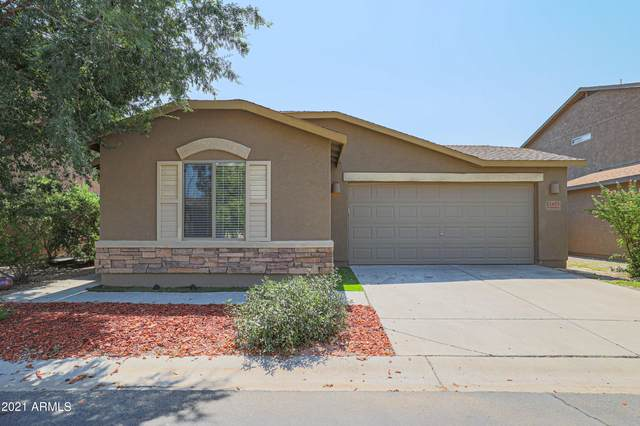2477 E Meadow Land Drive, San Tan Valley, AZ 85140 (MLS #6290339) :: NextView Home Professionals, Brokered by eXp Realty