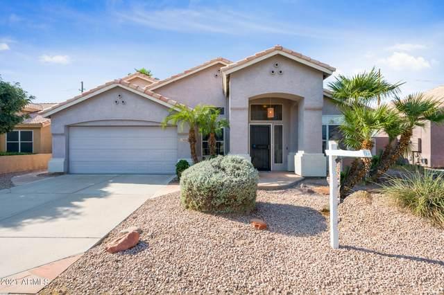 15006 S 47TH Street, Phoenix, AZ 85044 (MLS #6290478) :: Elite Home Advisors