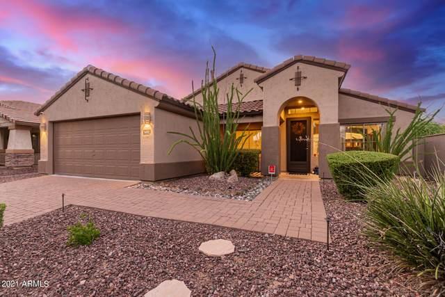 3002 W Caravaggio Lane, Phoenix, AZ 85086 (MLS #6291062) :: Yost Realty Group at RE/MAX Casa Grande