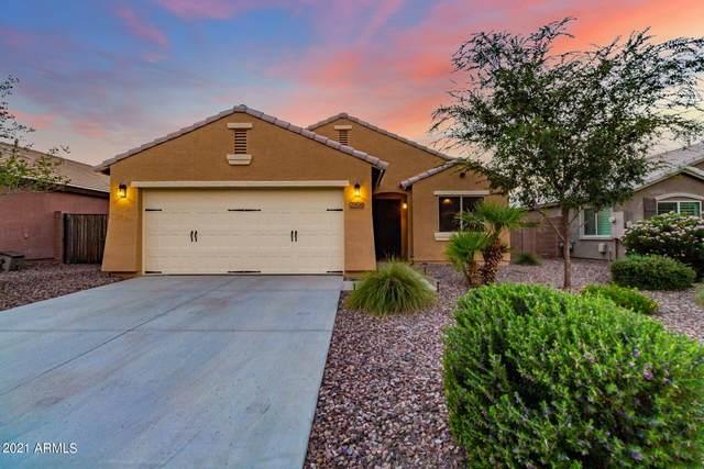 7906 S Sorrell Lane, Gilbert, AZ 85298 (MLS #6291296) :: Elite Home Advisors