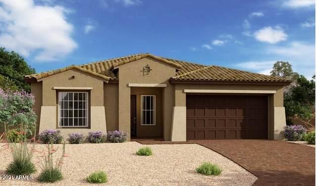 4816 S Pluto, Mesa, AZ 85212 (MLS #6291330) :: Klaus Team Real Estate Solutions