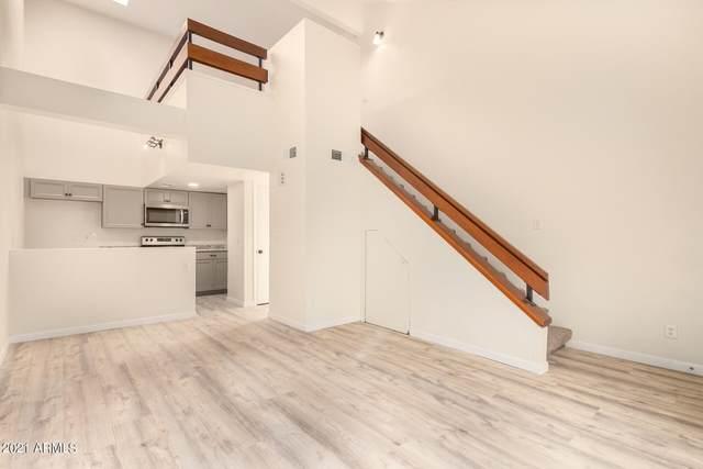 1432 W Emerald Avenue #699, Mesa, AZ 85202 (MLS #6291793) :: Yost Realty Group at RE/MAX Casa Grande