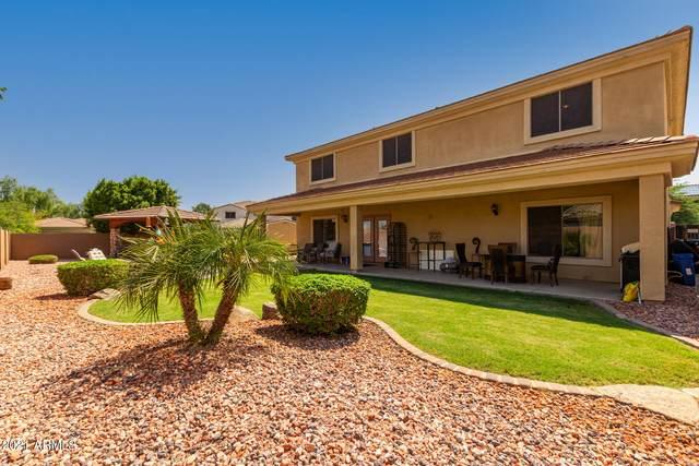 16914 W Tasha Drive, Surprise, AZ 85388 (MLS #6291923) :: Elite Home Advisors