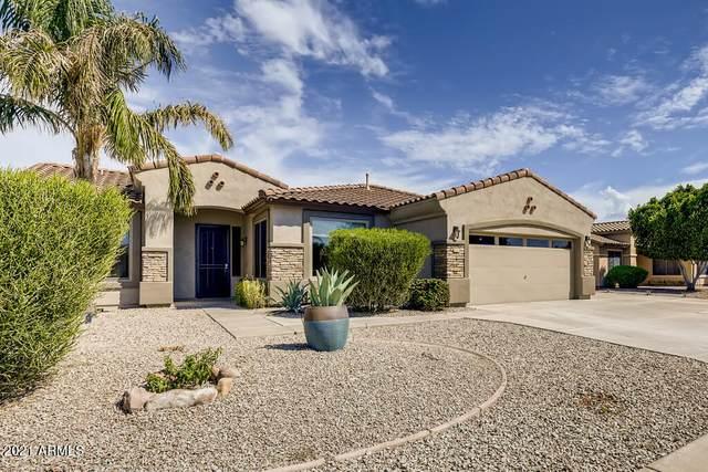 2241 S Portland Avenue, Gilbert, AZ 85295 (MLS #6291926) :: Relevate | Phoenix