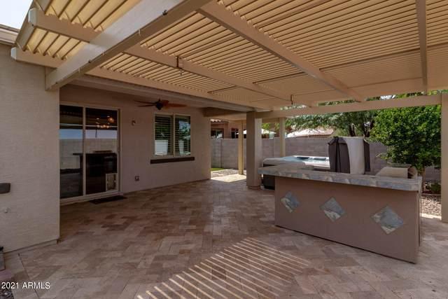 2292 W Chinook Drive, Queen Creek, AZ 85142 (MLS #6292045) :: Elite Home Advisors