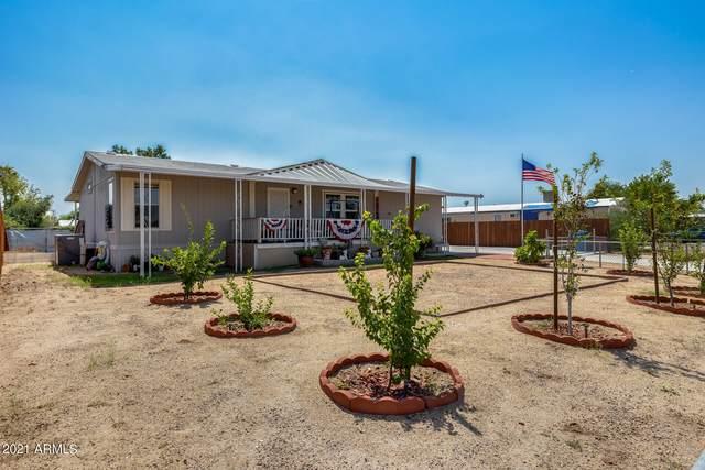3617 W Rose Garden Lane, Glendale, AZ 85308 (MLS #6292217) :: Elite Home Advisors