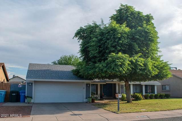 7635 W College Drive, Phoenix, AZ 85033 (MLS #6292225) :: Yost Realty Group at RE/MAX Casa Grande