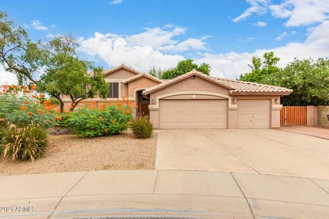 1050 E Tyson Court, Chandler, AZ 85225 (MLS #6292238) :: Relevate | Phoenix
