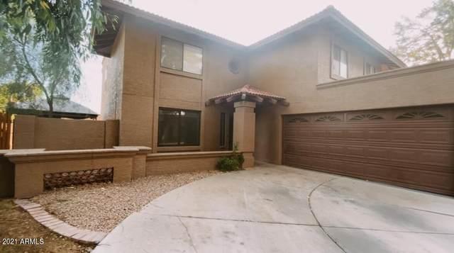 241 E Tremaine Avenue, Gilbert, AZ 85234 (MLS #6293398) :: Relevate | Phoenix