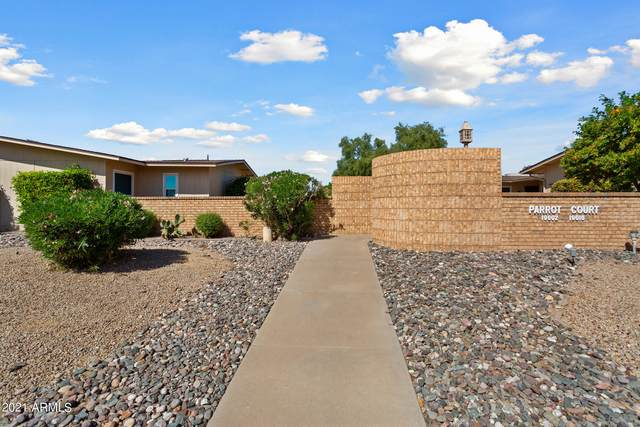 19006 N 134th Drive, Sun City West, AZ 85375 (MLS #6293403) :: The Property Partners at eXp Realty