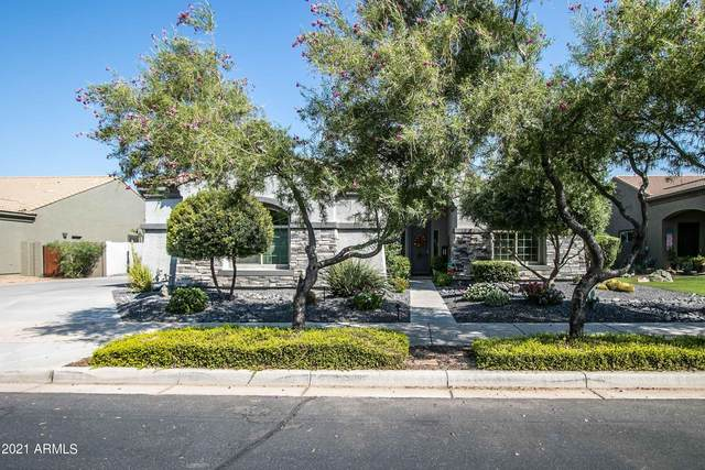 21400 E Camacho Road, Queen Creek, AZ 85142 (MLS #6293551) :: Elite Home Advisors