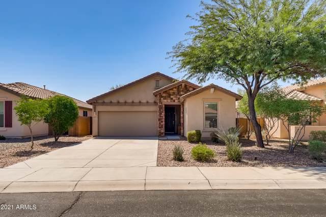 12097 W Dove Wing Way, Peoria, AZ 85383 (MLS #6293859) :: Elite Home Advisors