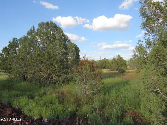 4301 N Hillside Road, Ash Fork, AZ 86320 (MLS #6294034) :: Keller Williams Realty Phoenix